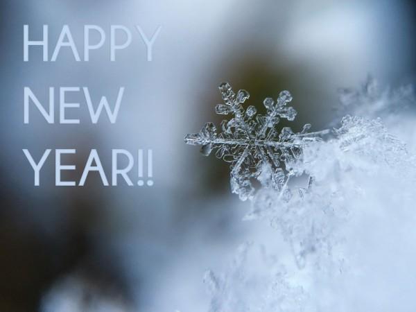 xHappy New Year!!